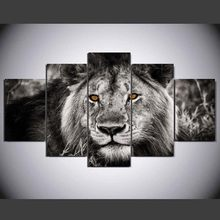 5 piece Set Brown Eye Lion canvas painting Canvas picture painting anime room decor print poster wall art WD-1890(China)