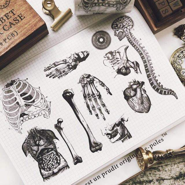 60mm wide  vintage Skull bone Decoration planner washi tape DIY scrapbooking masking tape Escolar