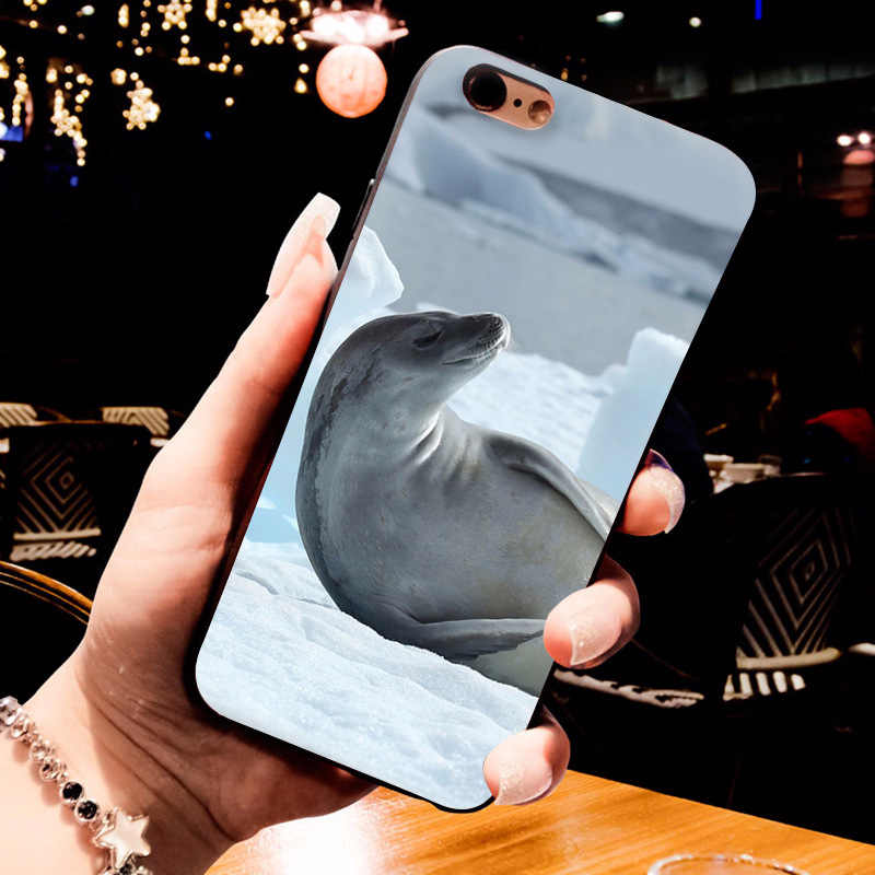 MaiYaCa Белый Черный Морской уплотнитель животное Специальное предложение Роскошный Вертикальный чехол для телефона iPhone 8 7 6 6S Plus X 10 5 5S SE 5C Чехол Coque