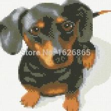Diy Алмазная картина со стразами вставить полный горный хрусталь Алмазная вышивка собака Пособия по немецкому языку Известный Собака Такса животных