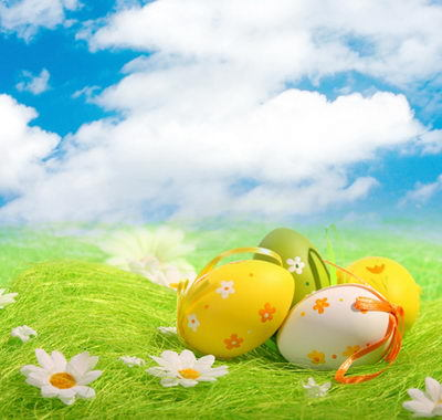 Vinyl Photography Backdrop Customize Easter Children Computer Print Backgrounds for Photo Studio F-016 seamless vinyl photography backdrop brown fence barrier green lawn computer printed children backgrounds for photo studio f 3184