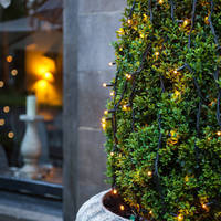 24V LED Outdoor Christmas tree Lights led fairy string lights for holiday party Christmas festoon Lighting Garden decoration