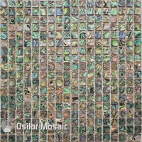 Free Shipping 100 Abalone Paua Sea Shell Natural Color Shell Mosaic Tile For Interior House Decoration