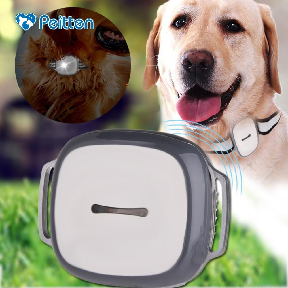 GPS dépistant pour la précision d'animal familier de chiot GPS LBS et WIFI positionnement Multiple GPS traqueur extérieur d'animal familier pour le chat de chien et d'autres animaux familiers