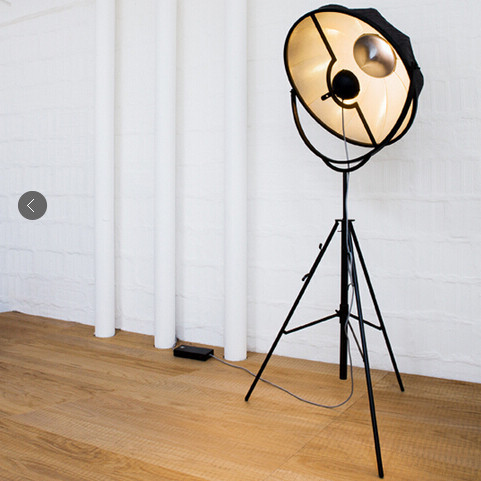 Photographic Floor Lamp - Flooring Ideas and Inspiration