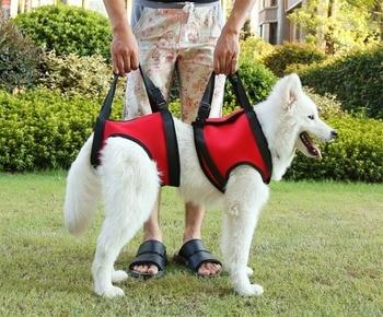 Hand Strap Vest Dog