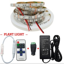 5M LED Grow Light 3:1 3 Red 1 Blue Aquarium Led Grow Lamp+Power Supply+ Led Dimme Controller for Greenhouse Hydroponic