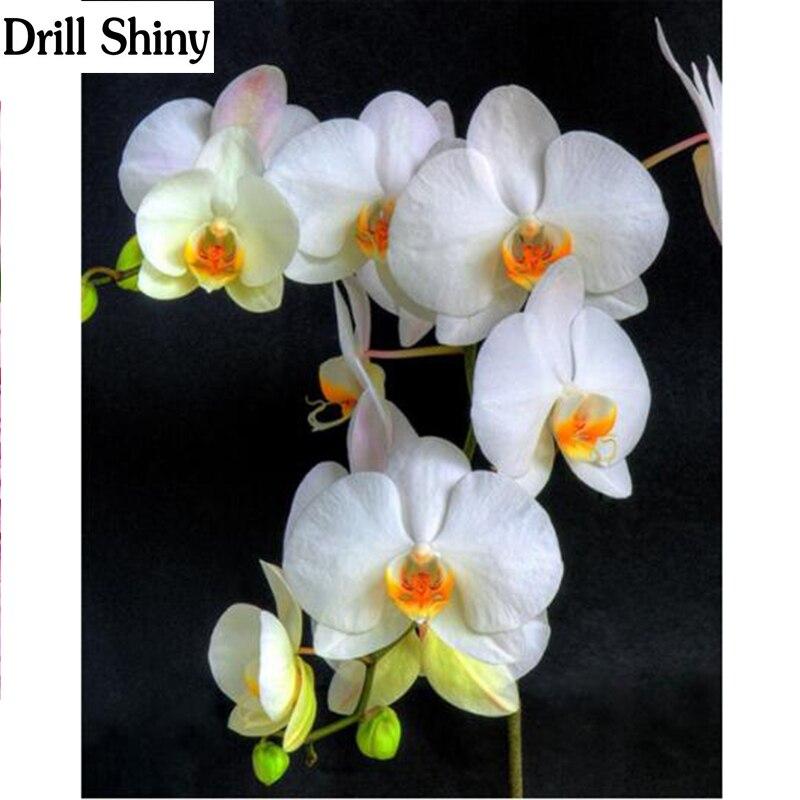 Moth Orchid 5D DIY Diamond Painting Embroidery Needlework Cross Stitch Art Decor