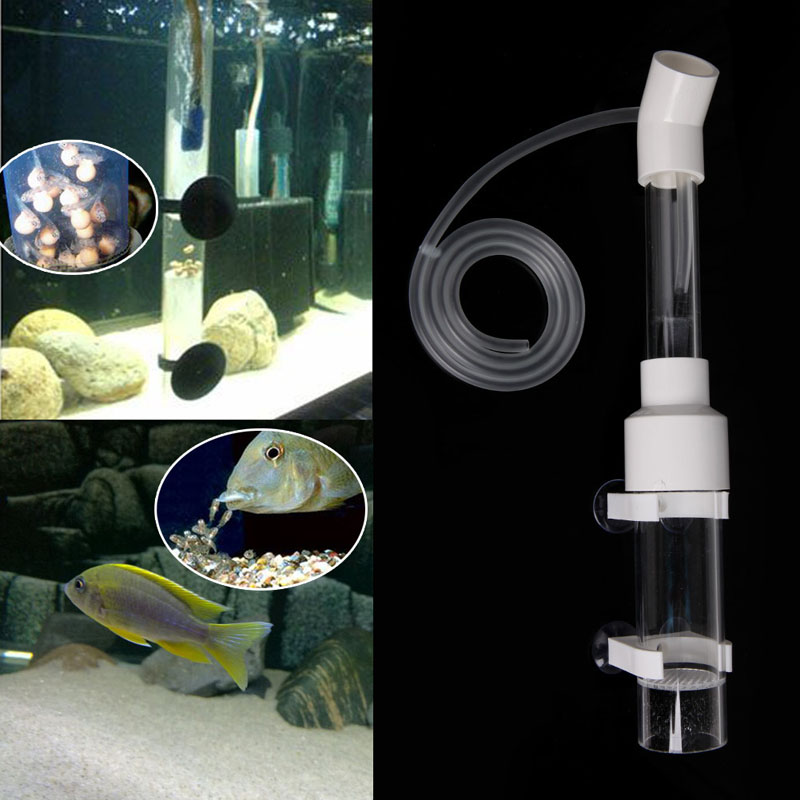 Aquarium Cichlids Tumbler Incubator Fish Hatchery Eggs Instead Mouth Brooding