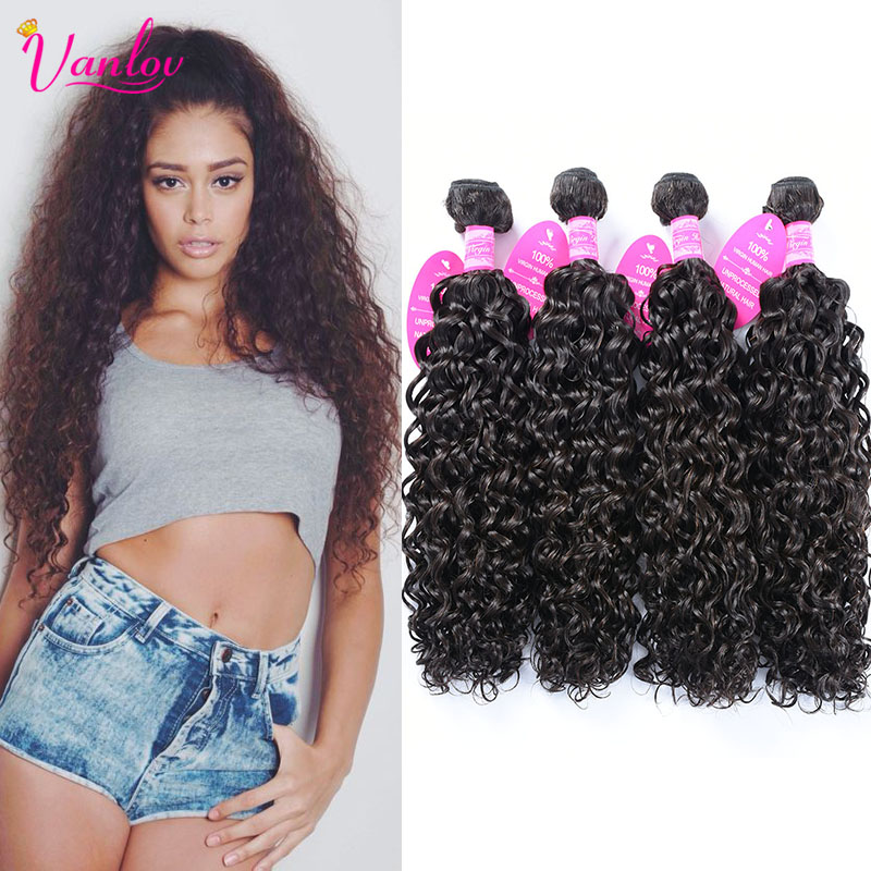 8a Brown Malaysian Water Wave Virgin Hair 4 Bundles Ocean Wave Malaysian Curly Hair Bundles Natural Wave Curly Weave Human Hair