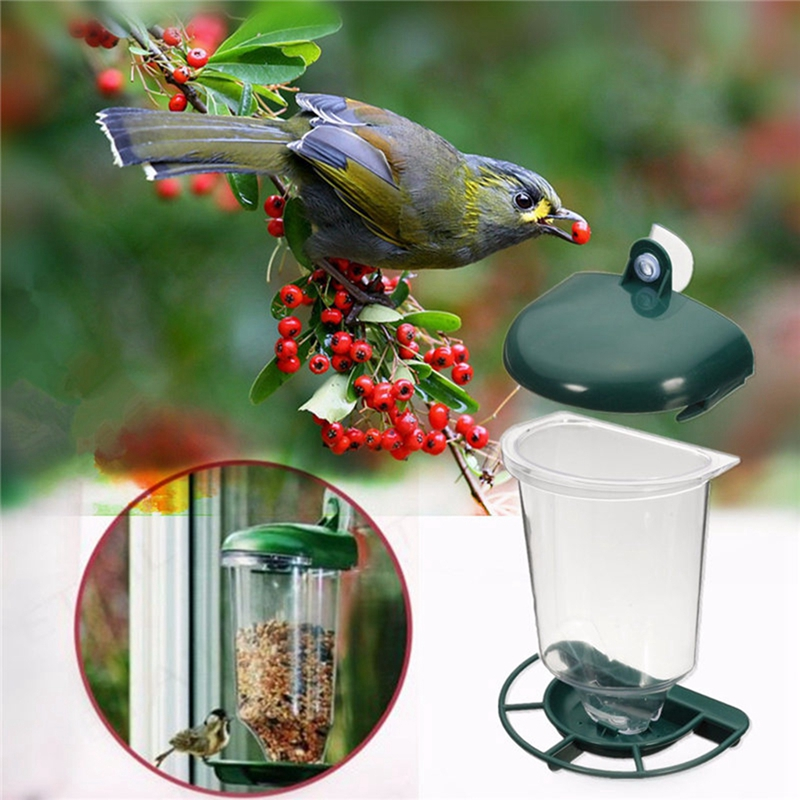 2018 Birds Parrot Shower Stand Window Wall Suction Cup Toys Paw Grinding Sw0514 Home & Garden Storage Shelves & Racks