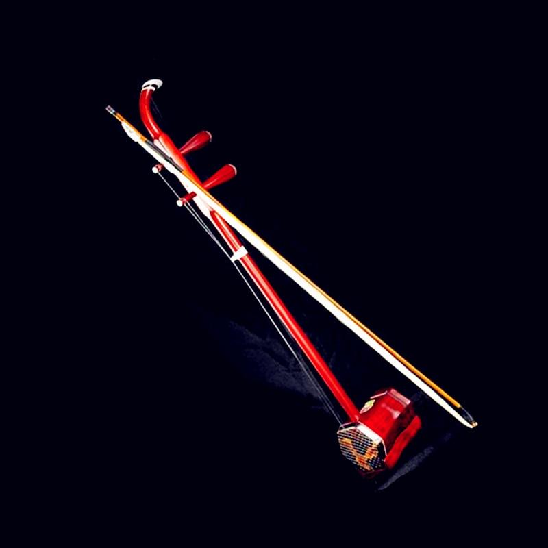 Chinois Erhu Huqin Folk Instrument à Cordes Strik Muziek Palissandre Plat Tige Professionnel Musique Erhu Accessoires chaîne Arc Livre