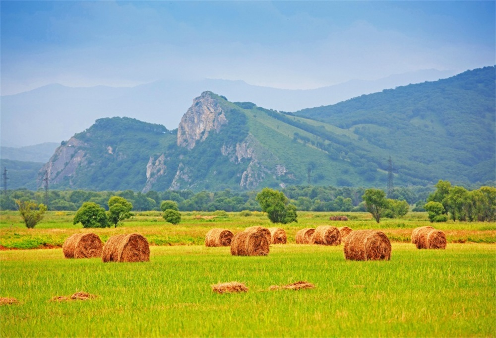 Laeacco Farm Hay Bale Filed Mountains Scenic Photography Backgrounds Customized Photographic Backdrops For Photo Studio