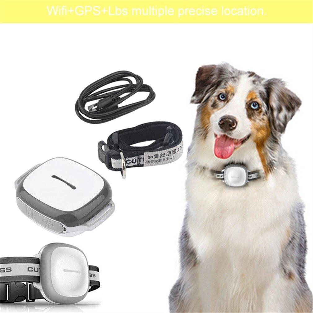 Détecteur intelligent sans fil pour animaux de compagnie GPS étanche pour animaux de compagnie chien chat collier précis Anti-perte dispositif de localisation de traqueur de sécurité