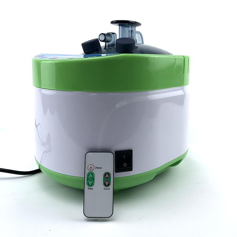 Steam Generator 220V/ EU Plug 2000W Larger Capacity 4L Steamer Pot for Steam Sauna Room