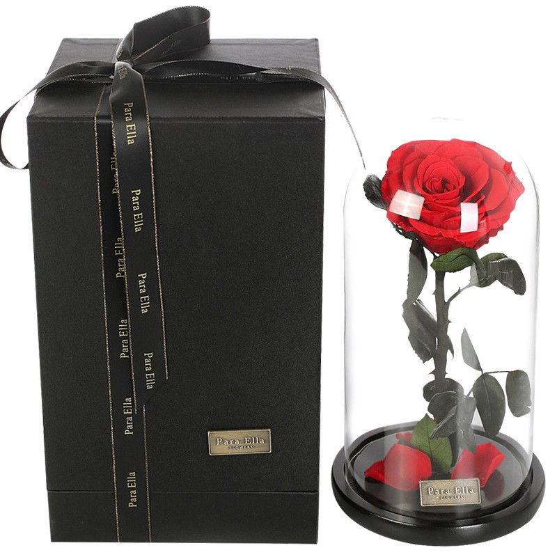 H&D Beautiful Gifts for Lady Enchanted Rose Preserved Fresh Flower with Fallen Petals in a Glass with Box Wedding Favors