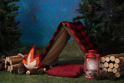 Camping Tent Campfire Wood Lumberjack tree Outdoor Background Vinyl cloth High quality Computer print children kids backdrop цена и фото