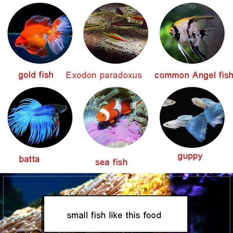 A tengeri hal élelmiszer spirulina pehely hal takarmány Cichlids - Pet termékek - Fénykép 3