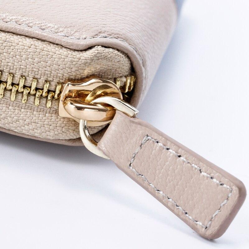 carneiro para mulheres Interior : Coin Pocket, note Compartment, suporte de Cartão