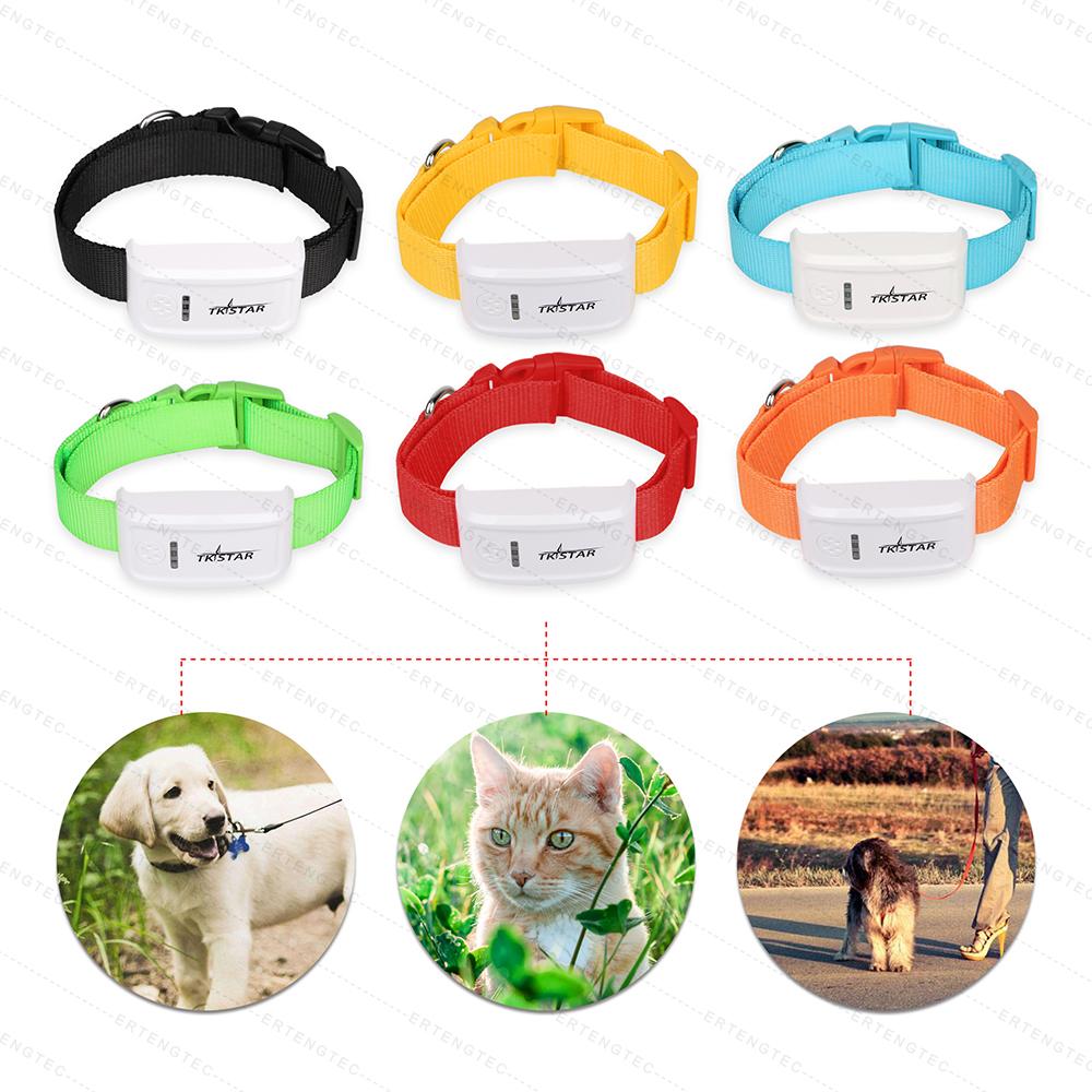 Prix pour Mini Pet Chien GPS Tracker TK909 Dispositif de Suivi GPS Locator Imperméable À L'eau 400 heures Autonomie En Veille Livraison IOS Android App Web de suivi