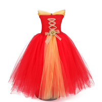 Christmas Carnival Girl Tutu Dress Gold Sash New Year Party Tulle Tutu Dress Princess Birthday Costume