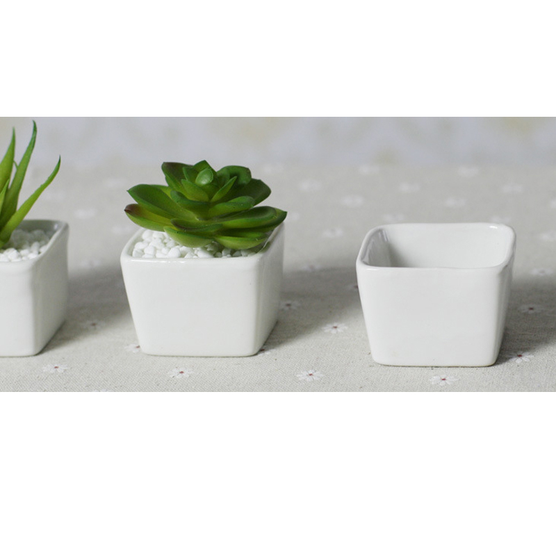 Top price Free shipping Mini indoor ceramic pots plant white ceramic ...