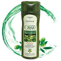 Anti-dandruff Olive Oil Shampoo Restores Damaged Hair Deeply Nourishes Safe for All Hair Types and Color Treated Hair