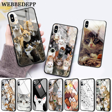 WEBBEDEPP Cat Cute Mouse Pig Cats Glass Phone Case for Apple iPhone 11 Pro X XS Max 6 6S 7 8 Plus 5 5S SE
