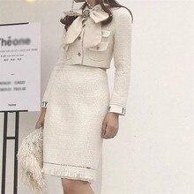 2019 Euramerican Frühling Sommer Neue Mode Elegante Dame Polyester Drehen unten Kragen High End Bogen Kragen Frau 2 Stück rock Set