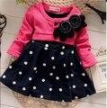 Baby Girl Vestidos de Otoño 2015 de la Marca Del Bebé Cabritos Del Vestido Vestidos de Princesa Vestido de Los Niños Vestidos de Los Niños para Las Niñas