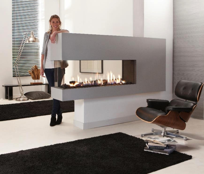 On Sale Fireplaces With Smart Control 48 Inch Black / Silver Bio-house Ethanol Burner