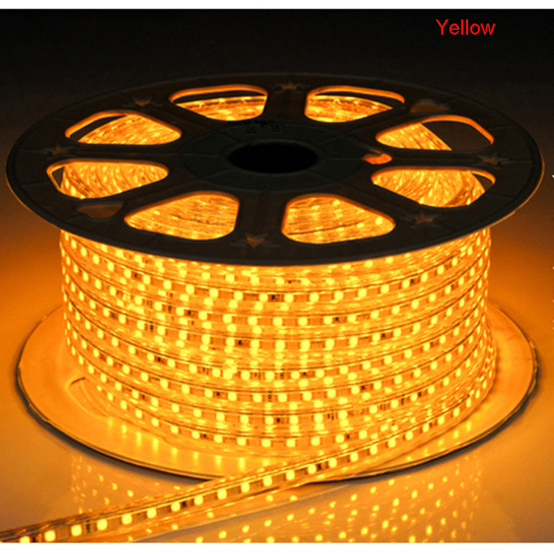 220 V Led tira SMD 5050 chip luz flexible 1-25M con enchufe de - Iluminación LED