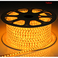 220V Led strip SMD 5050 chip  flexible light 1-25M with Power Plug 60leds/m Waterproof IP67 led light home decoration UR