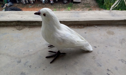 simulation white dove bird 18x22cm model,polyethylene&furs peace bird.home decoration Xmas gift w4204