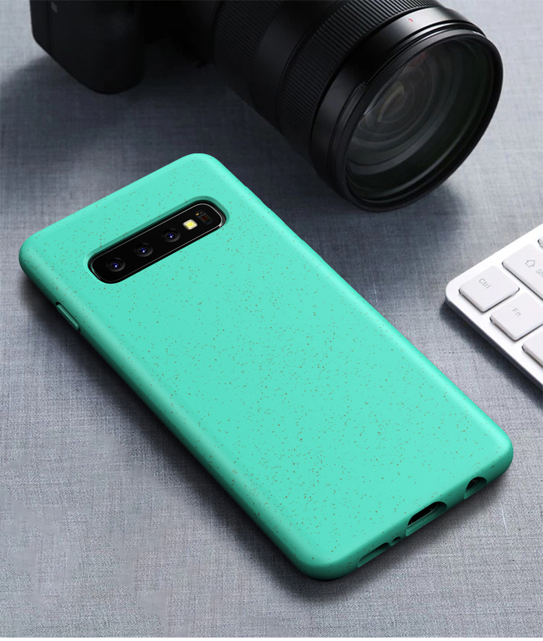 Samsung Galaxy S10 Plus S10e Shockproof Airbag Case (11)