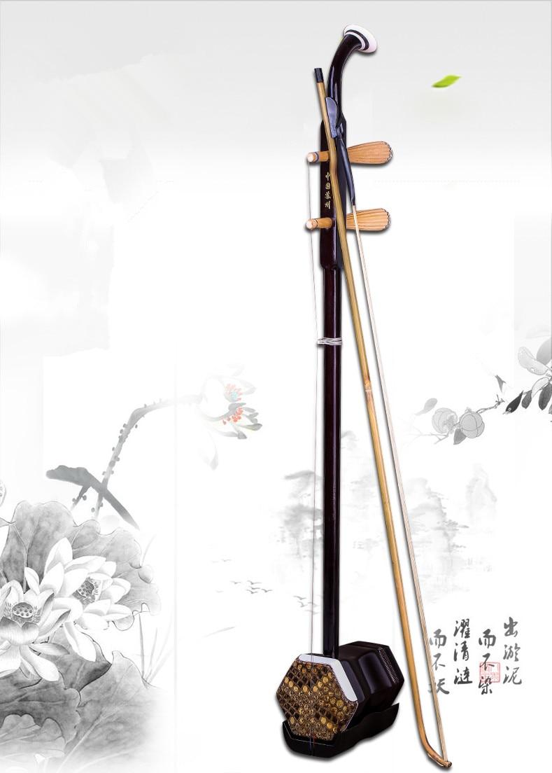 Chinois Traditionnel Erhu 2-chaîne Violon Violon Urheen Musical Instrument Avec Sac