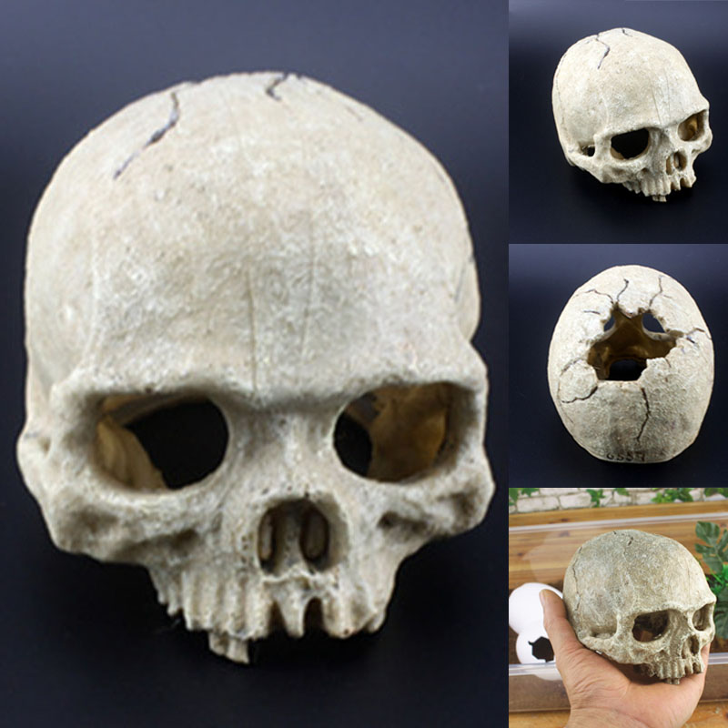 Skull Aquarium Decoration Terrarium Reptile Fish Tank Ornament Simulation Landscape -Drop
