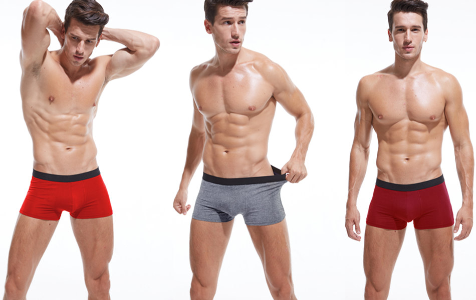 4pcs/lot SKYHERO Male Panties Cotton Men's Underwear Boxers