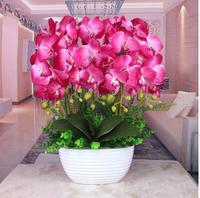 Фаленопсис цветок моделирования люкс гостиная украшения цветок ваза украшения весь Шелковый цветочный горшок украшения