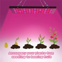 Growing Lamps LED Grow Light 40W AC85 265V Full Spectrum Plant Lighting Fitolampy For Plants Flowers Seedling Cultivation