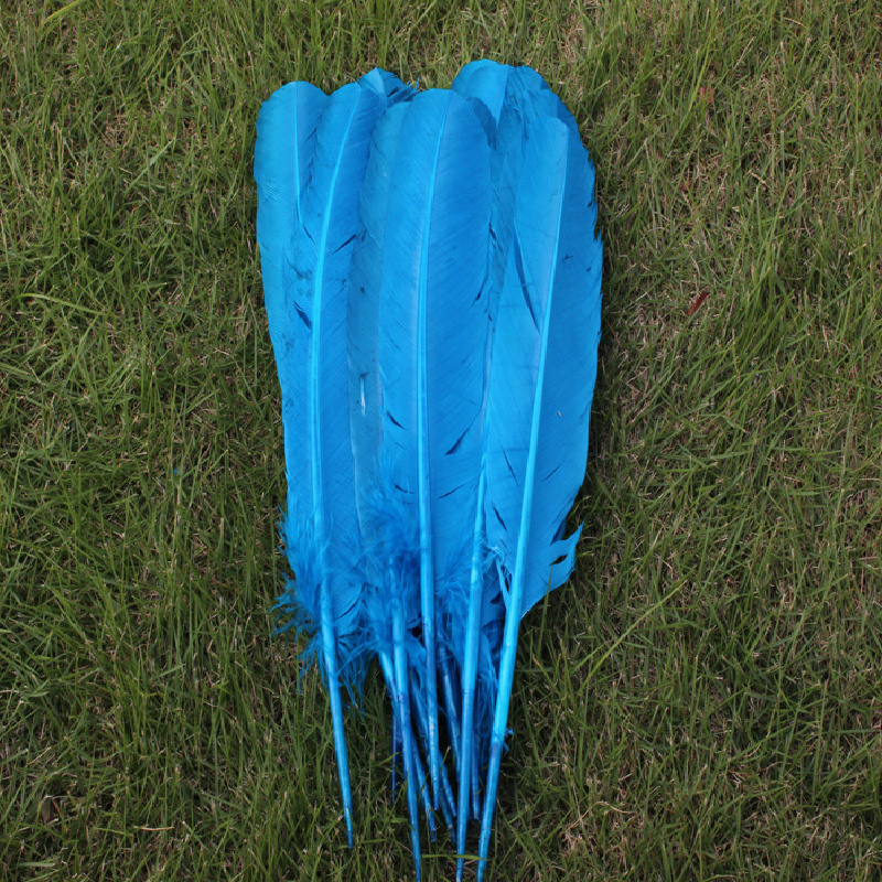 Free shipping 50pcs wholesale 25-30cm Lake blue color real natural turkey feathers plumes hair extensions goose feather for sale