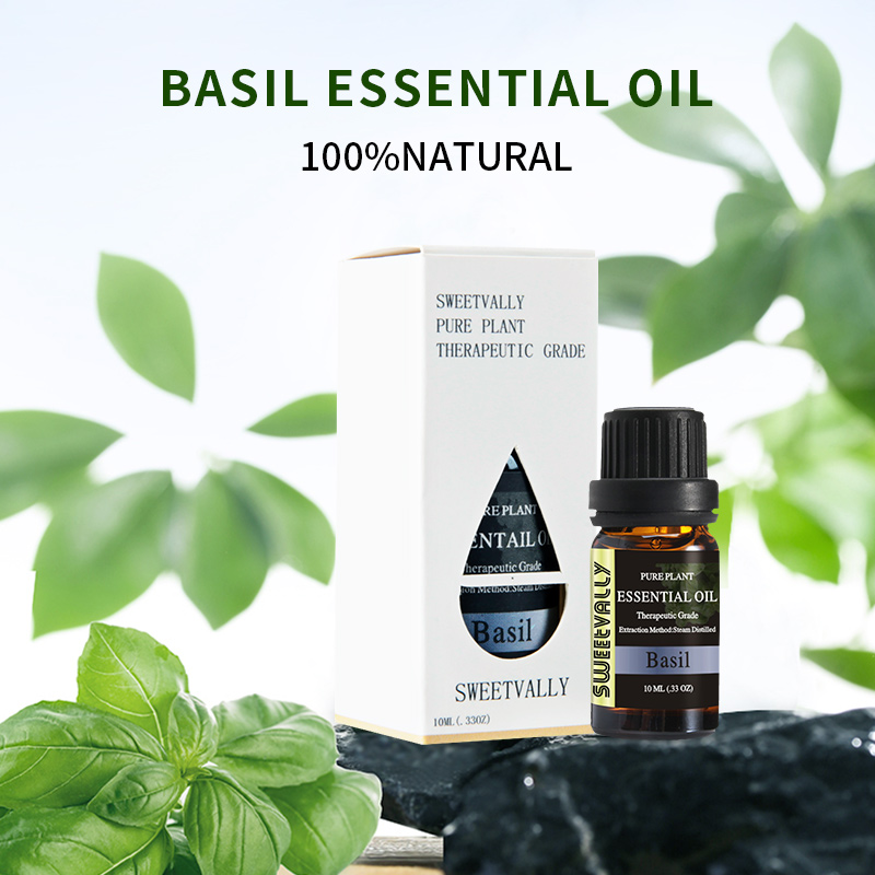 1pc 10ml Basil Essential Oil Relieve Stress For Humidifier Fragrance Lamp Air Freshening Essential Oil Water-soluble Oils