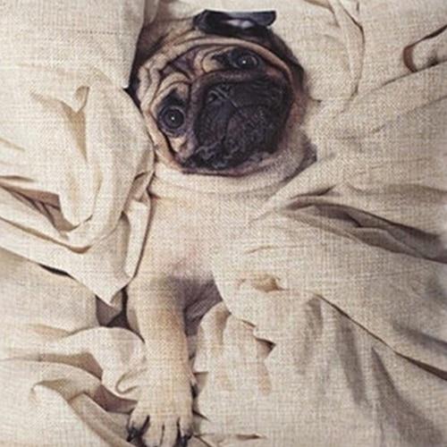 18 inch Square Cute Dog Funny Graffiti Linen Pillow Cover Car Cushion Case Decor