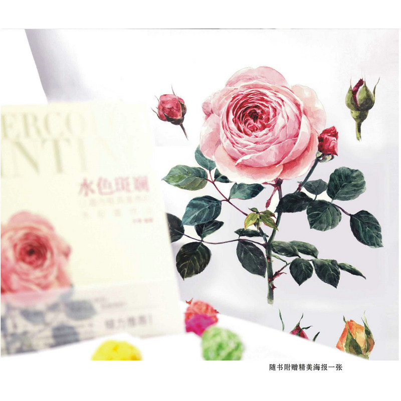 chinese watercolor flower fruit succulents dessert painting art book