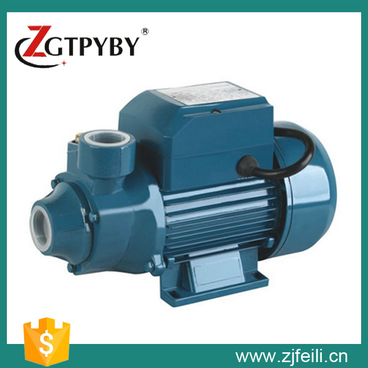 Exported to 58 countries irrigation water pump garden pump for Garden water pump