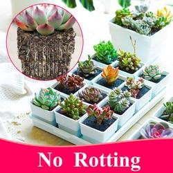 Meshpot 2 3 4 polegadas de plástico quadrado suculentas plantador potes com bandeja conjunto, berçário pote cactus planta pote jardim pote