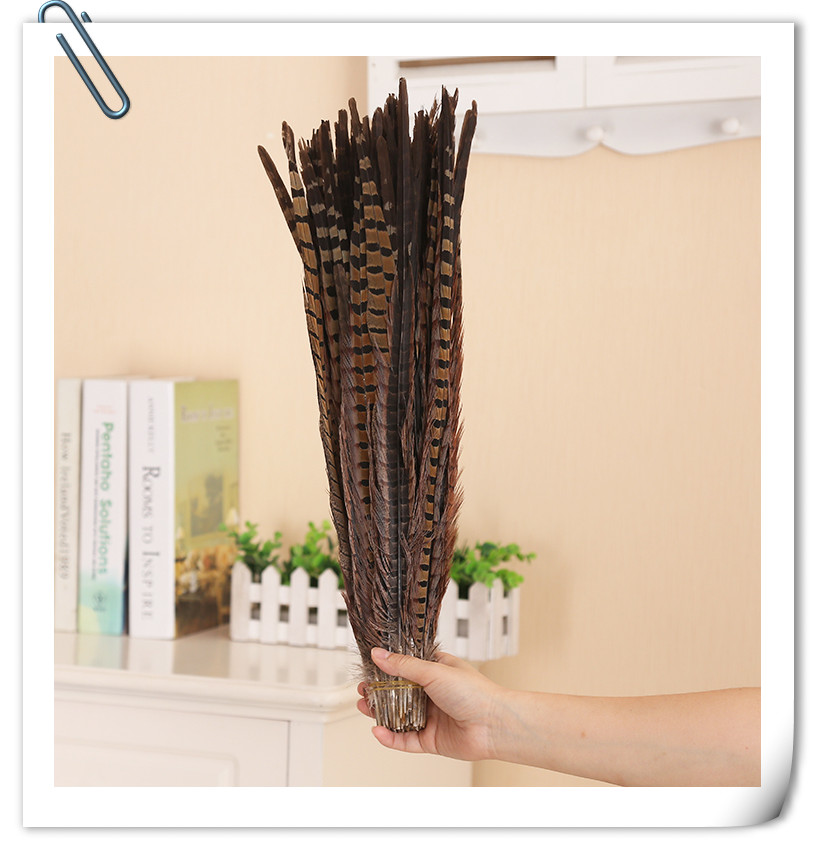 Free Shipping 500pcs natural pheasant feathers Lady Amherst Ringneck pheasant tail feathers for crafts indian feather headdress