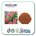 Органические 3% Салидрозида Rhodiola Rosea Root Powder Extract