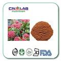 Organic 3% Salidroside Rhodiola Rosea Root Powder Extract
