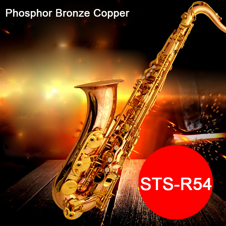 Professionale Sassofono Tenore Selma STS 54 B (b) piatto Sax Bronzo di Fosforo di Rame saxofone strumento musicale boccaglio con il Caso